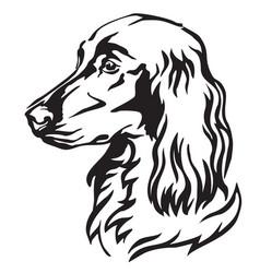 Decorative portrait of dog irish setter vector