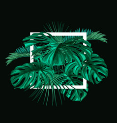 Tropical exotic leaves summer banner vector