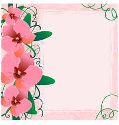 Floral background with orchid EPS10 vector image vector image