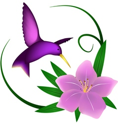 Hummingbird and lily vector image vector image