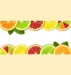 Banner with bright citrus fruits vector