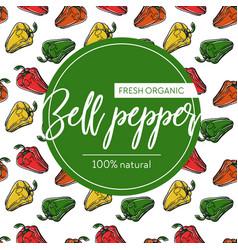 bell pepper seamless pattern and emblem market vector image