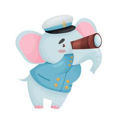 Cute elephant captain on vector