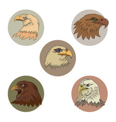Heads of eagles vector