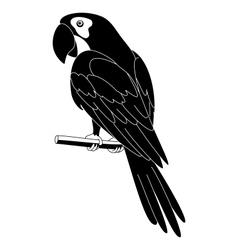 Parrot black silhouette vector image