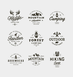 Set vintage wilderness logos hand drawn retro vector