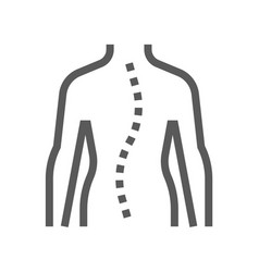 spinal curvature orthopedic line icon vector image