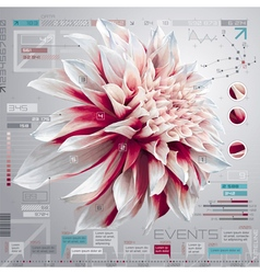 Dahlia infographics set vector image vector image