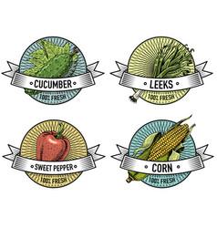 vintage set of labels emblems or logo for vector image