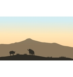 Beautiful silhouette of bull in hill vector