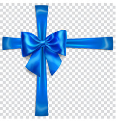 Blue bow with crosswise ribbons vector