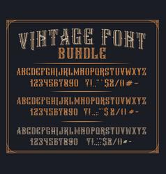 bundle vintage decorative fonts vector image