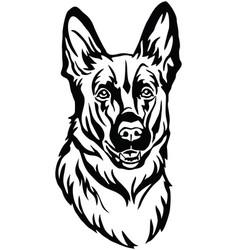 decorative portrait of dog shepherd vector image