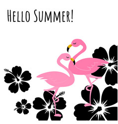 hello summer seamless pattern with flamingo vector image
