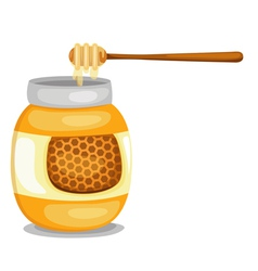 Jar with honey vector