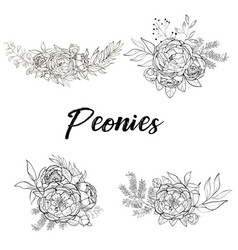 set of bouquets of peonies vector image