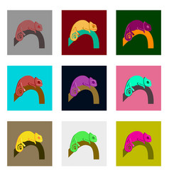 set of in flat style chameleon vector image