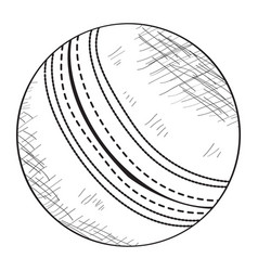 sketch of a cricket ball vector image
