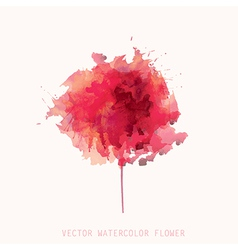 watercolor red flower vector image