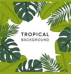 Frame made of hand drawn tropical palm banana and vector