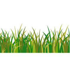 Green grass stalks tuft and seamless pattern vector