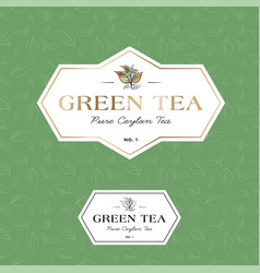 green tea logo seamless pattern label vector image