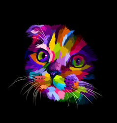 scottish fold cats head is colorful in the dark vector image
