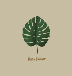 Tropical palm monstera leaf hello summer vector