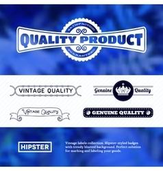Vintage premium labels set on tile structured vector image vector image