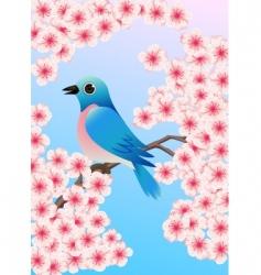 bluebird vector image vector image