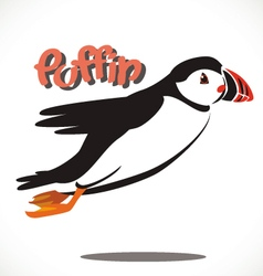 puffin bird 5 vector image