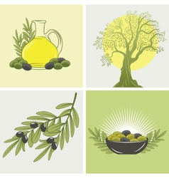 set of four banners on the theme of olives and oil vector image