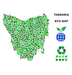 Leaf green mosaic tasmania island map vector