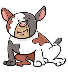 Spotted bull dog cartoon animal character vector