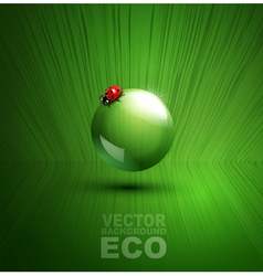 element for ecological design with ladybug vector image vector image