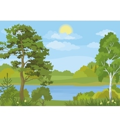 Landscape with Trees Lake and Sun vector image vector image