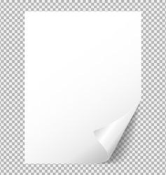 Sheet of white paper with a bent corner vector image