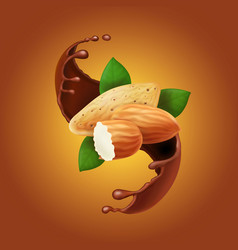 almonds in chocolate splash cocoa and nuts vector image