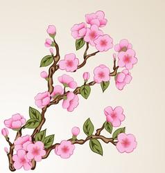 Background with sakura vector