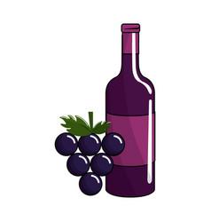 bottle of wine and grape fruit tasty vector image