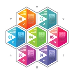 Business infographic concept colored hexagon block vector