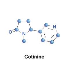 Cotinine alkaloid tobacco vector