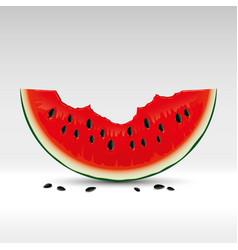 Red bitten watermelon vector