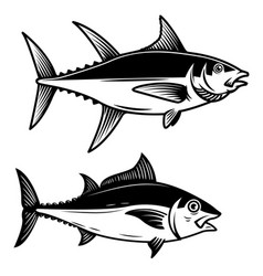 Set of tuna fish on white background design vector