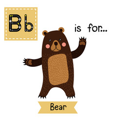 Tracing letter b for standing bear raising two vector
