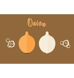 Flat of golden onion whole and half vector