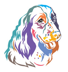 Colorful decorative portrait of dog english vector