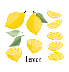 lemon fruits collection vector image
