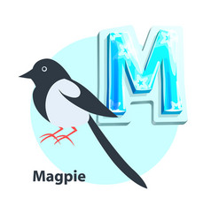 magpie for m letter in children crisscross-row vector image