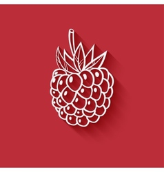 Raspberry on red background vector